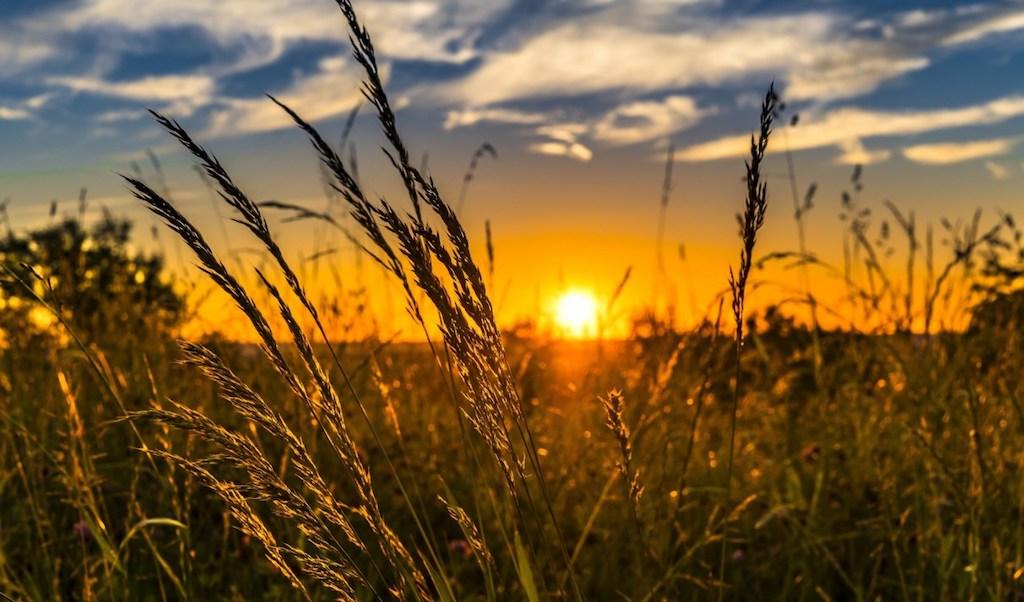 Paysage des champs avec coucher de soleil
